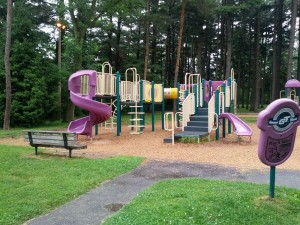 front side of sawyer park playground