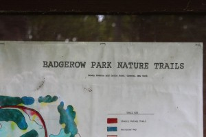 Badgerow Park Nature Trail map