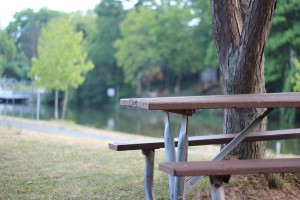 View from the picnic benches of the Erie canal