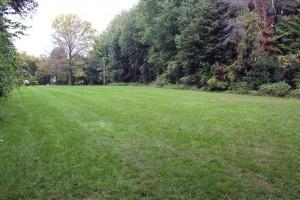 Griffith Park open field