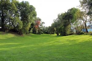 Pappas Park open field