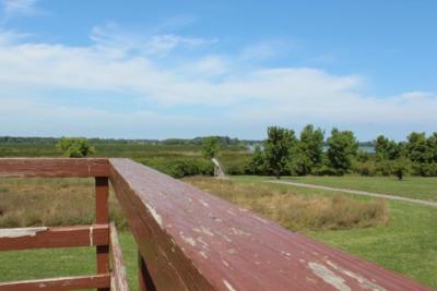 Braddock Bay hawk watch deck
