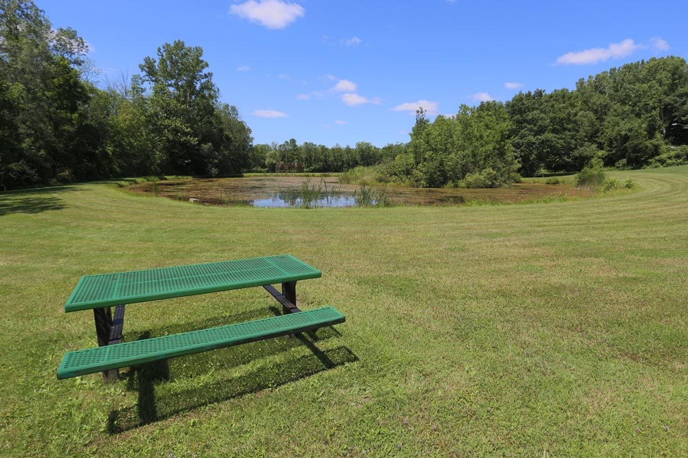 Stoney Brook Road Park bench and pond