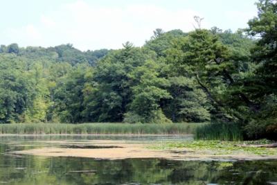 Devil's Cove Monroe County Park